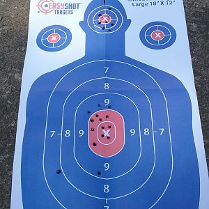 25 round target from approximately 50 yards with open sights